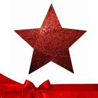 Χριστουγεννιάτικα Αστέρια Ντεκόρ