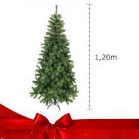 Δέντρα έως 120 cm