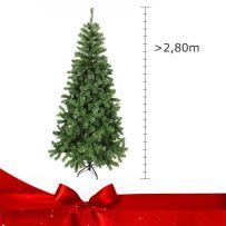 Δέντρα Μεγαλύτερα από 280 cm