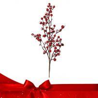 Χριστουγεννιάτικα Κλαδιά - Γκι Βάζου