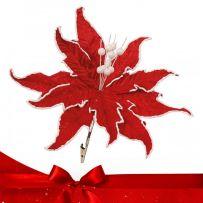 Κόκκινα Χριστουγεννιάτικα Λουλούδια Πικ