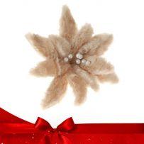 Μπεζ - Κρεμ Χριστουγεννιάτικα Λουλούδια Πικ