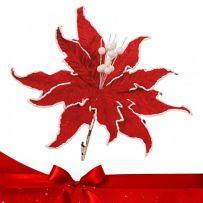 Χριστουγεννιάτικα Λουλούδια - Κλαδιά
