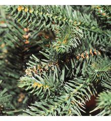 Χριστουγεννιάτικο Παραδοσιακό Δέντρο PRUNNUS (2,1m)