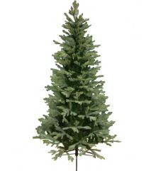 Χριστουγεννιάτικο Παραδοσιακό Δέντρο PINDOS (2,4m)