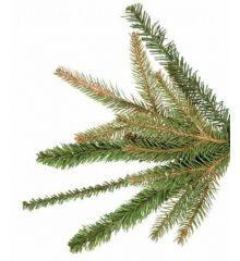 Χριστουγεννιάτικο Παραδοσιακό Δέντρο King Size MFAPE (3m)