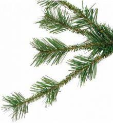 Χριστουγεννιάτικο Παραδοσιακό Δέντρο ΑΙΝΟΣ (2,1m)