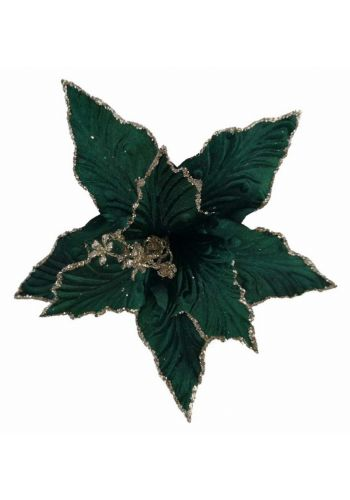 Χριστουγεννιάτικο Λουλούδι, Πράσινο Αλεξανδρινό (25cm)